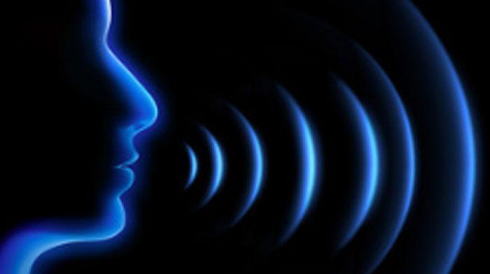 Training für Ihre Stimme